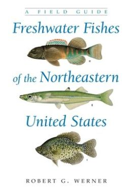 Freshwater Fishes of the Northeastern United States: A Field Guide
