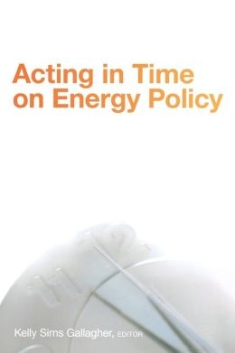 Acting in Time on Energy Policy