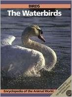 Birds: The Waterbirds
