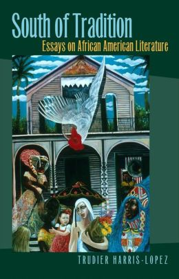 South of Tradition: Essays on African American Literature