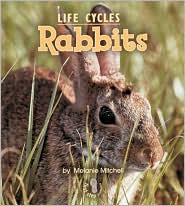 Rabbits (First Step Nonfiction - Life Cycles Series)