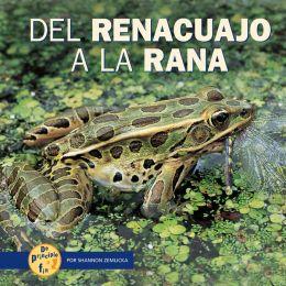 Del Renacuajo a la Rana