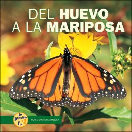 Del Huevo a la Mariposa (from Egg to Butterfly)