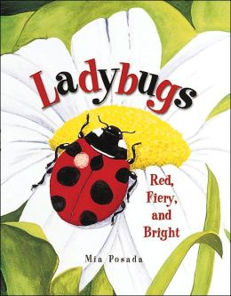 Ladybugs: Red, Fiery, and Bright