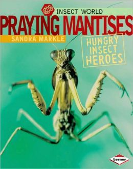 Praying Mantises: Hungry Insect Heroes