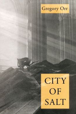 City of Salt (Pitt Poetry Series)