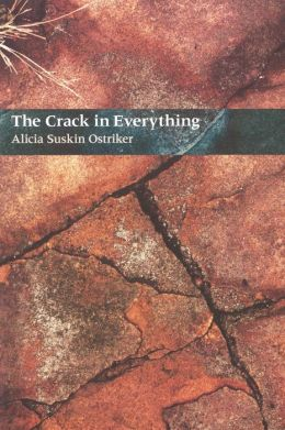 The Crack in Everything (Pitt Poetry Series)