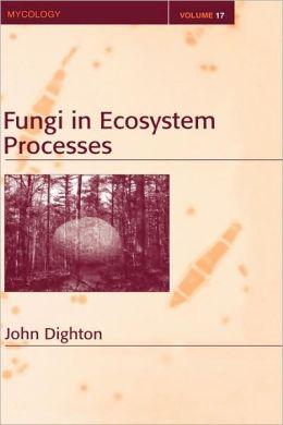 Fungi In Ecosystem Processes