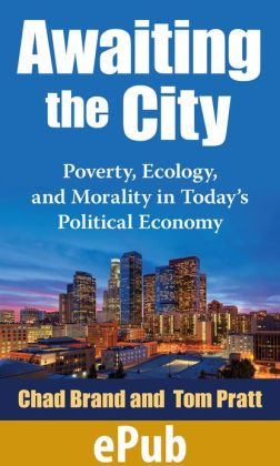 Awaiting the City: Poverty, Ecology, and Morality in Today's Political Economy
