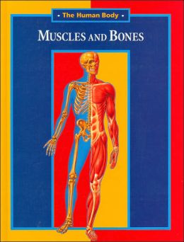 Muscles and Bones (The Human Body Series)