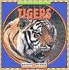 Tigers (Animals I See at the Zoo Series)