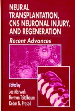 Neural Transplantation, CNS Neuronal Injury and Regeneration