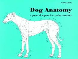 Dog Anatomy: A Pictorial Approach to Canine Structure