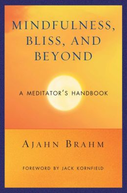 Meditator's Handbook: Mindfulness, Bliss, and Beyond