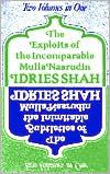 Exploits and Subtleties of Mulla Nasrudin