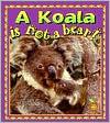 A Koala Is Not a Bear!