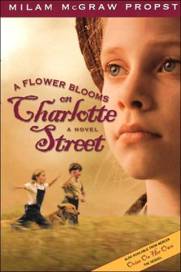 A Flower Blooms On Charlotte St