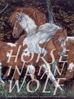 Horse Indian Wolf: The Hidden Picture of Judy Larson