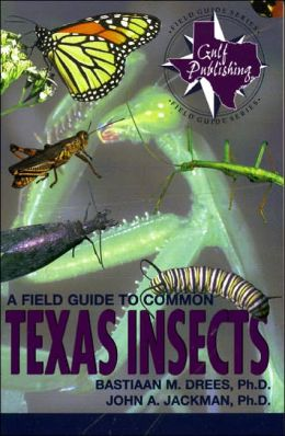 Field Guide to Common Texas Insects