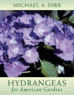 Hydrangeas for American Gardens
