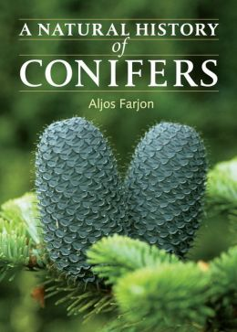 A Natural History of Conifers