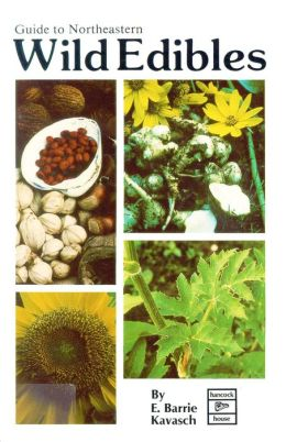 Guide to Northeastern Wild Edibles