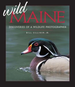 Wild Maine: Discoveries of a Wildlife Photographer