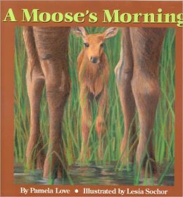Moose's Morning