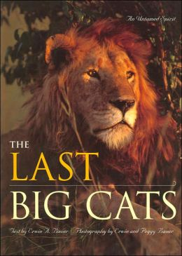Last Big Cats: An Untamed Spirit