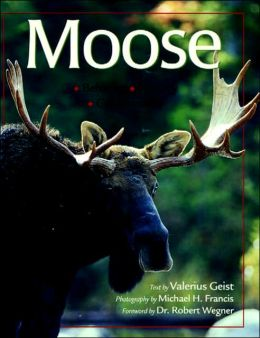 Moose: Behavior, Ecology, Conservation