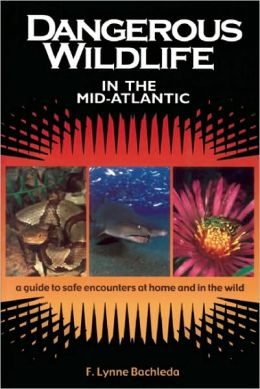 Dangerous Wildlife in the Mid-Atlantic: A Guide to Safe Encounters at Home and in the Wild