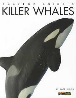 Killer Whales (Amazing Animals Series)