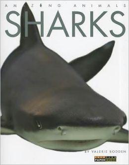 Amazing Animals: Sharks