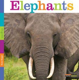 Seedlings: Elephants