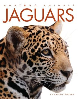 Jaguars (Amazing Animals Series)