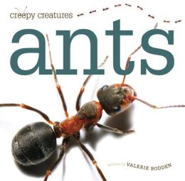 Creepy Creatures: Ants