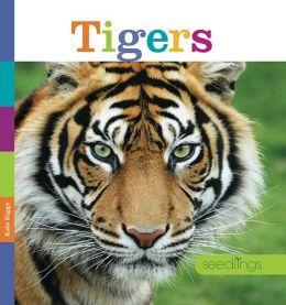 Seedlings: Tigers