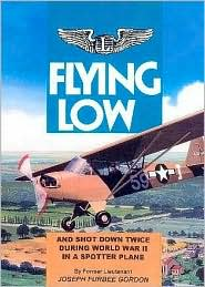 Flying Low: And Shot Down Twice during World War II in a Spotter Plane