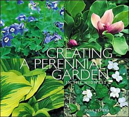 Creating a Perennial Garden in the Midwest
