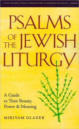Psalms of the Jewish Liturgy: A Guide to Their Beauty, Power, and Meaning