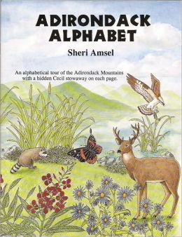 The Adirondack Alphabet Book: An Alphabetical Tour of the Adirondack Mountains