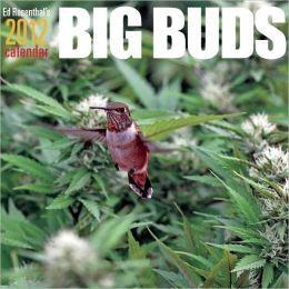 Ed Rosenthal's Big Buds 2012 Calendar