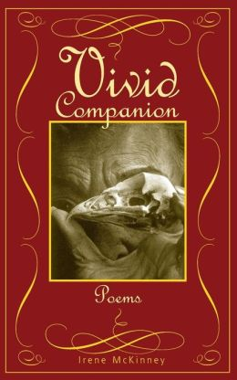Vivid Companion