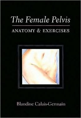 Female Pelvis: Anatomy and Exercises
