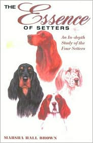 The Setters: A Comprehensive Look at the English, Gordon, Irish and the Red and White Breeds