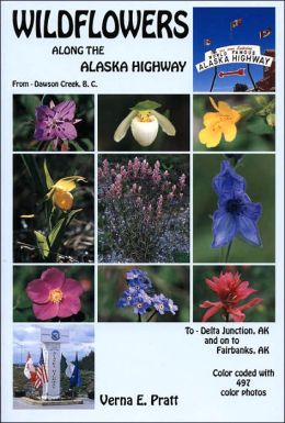 Wildflowers Along the Alaska Highway: A Roadside Guide
