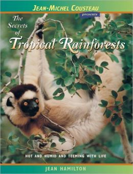Secrets of Tropical Rainforests: Hot and Humid and Teeming with Life