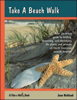 Take a Beach Walk