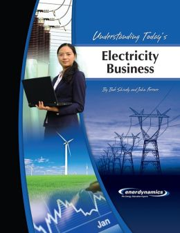 Understanding Today's Electricity Business