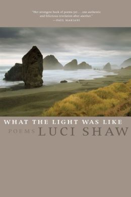 What the Light Was Like: Poems